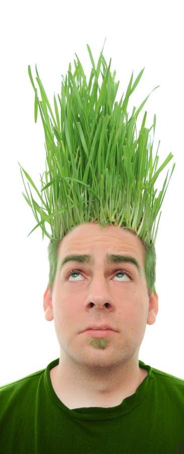 Verde indo foto de stock royalty free