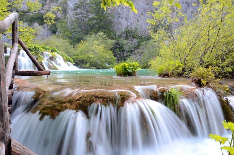 Verde natural de Croatie Parc de los lagos Plitvice imagen de archivo