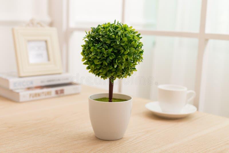 Verde piantato sull'ufficio dello scrittorio immagine stock libera da diritti
