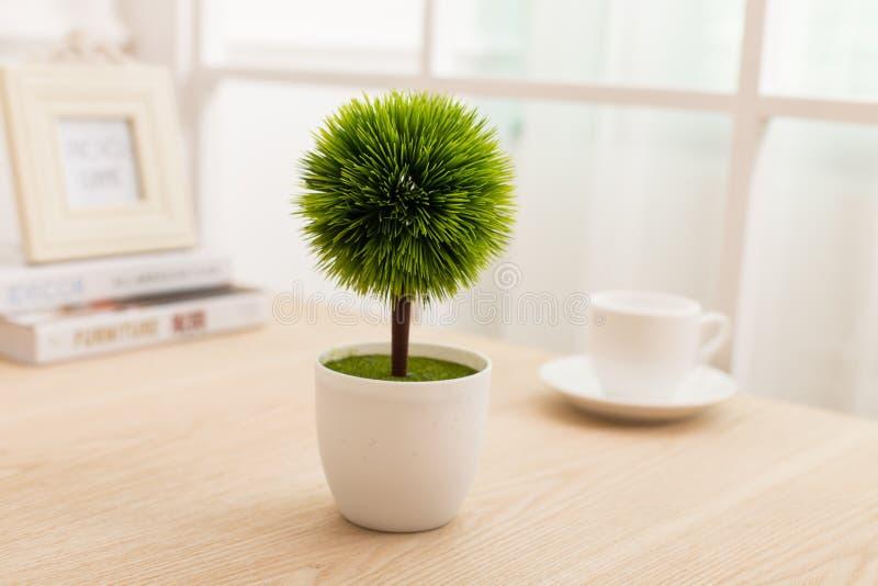 Verde plantado en la oficina del escritorio imagenes de archivo