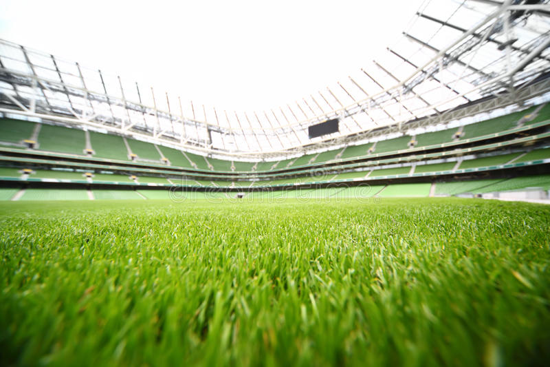 Verde-tagli l'erba in grande stadio fotografia stock libera da diritti