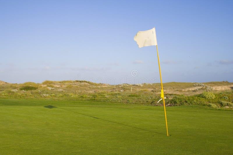 Download Verde In Un Terreno Da Golf Fotografia Stock - Immagine di competi, putt: 3137164