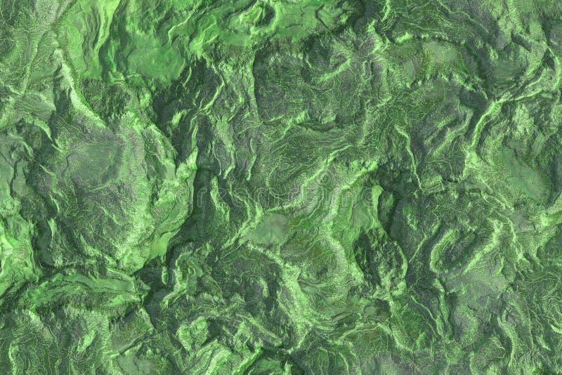 Verde, vegetazione, erba, albero