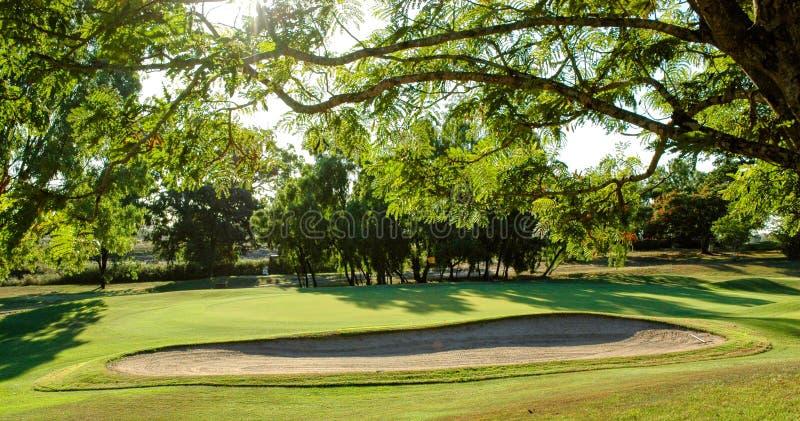 Verde y arcón del golf foto de archivo libre de regalías