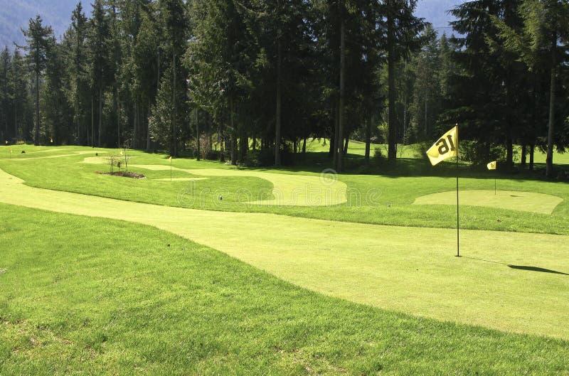 Verde y contacto del golf imagen de archivo libre de regalías