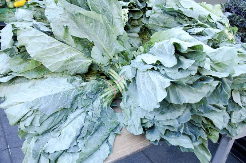 Verdes de la col com n imagenes de archivo