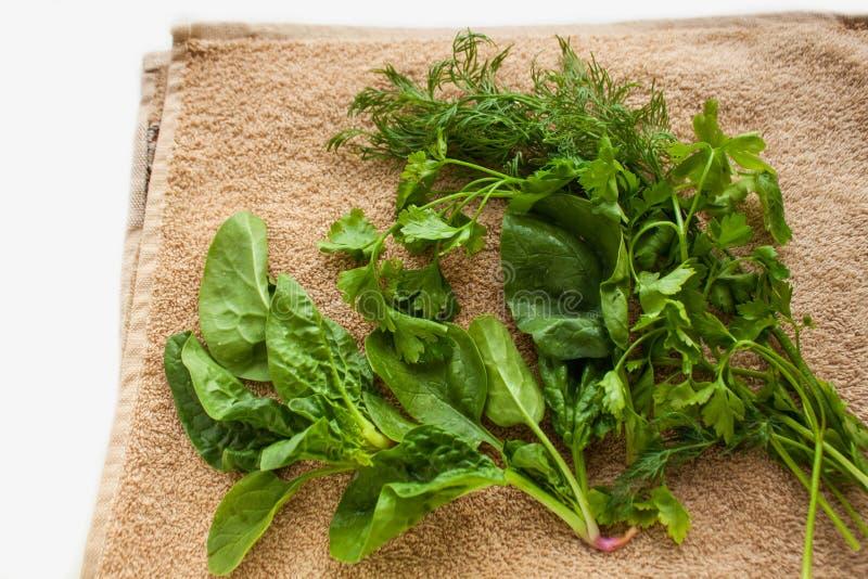 Verdes frescos lavados en la toalla de cocina, forma de vida sana, eco amistoso, cruda, fondo del vegano, espacio de la copia, en imagenes de archivo