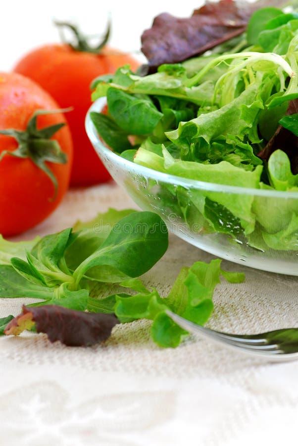 Verdi e pomodori del bambino fotografia stock