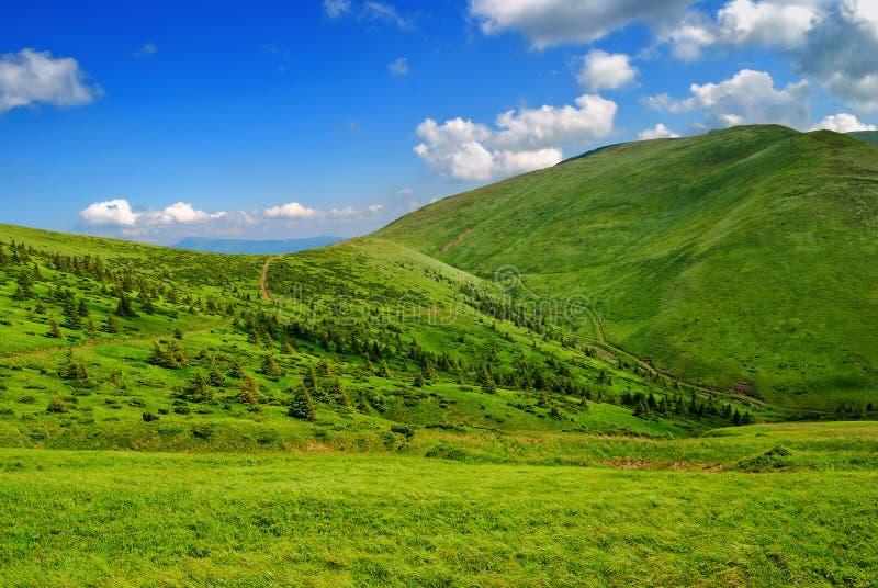 Verdissez la vallée abondante de montagne avec la voie image libre de droits