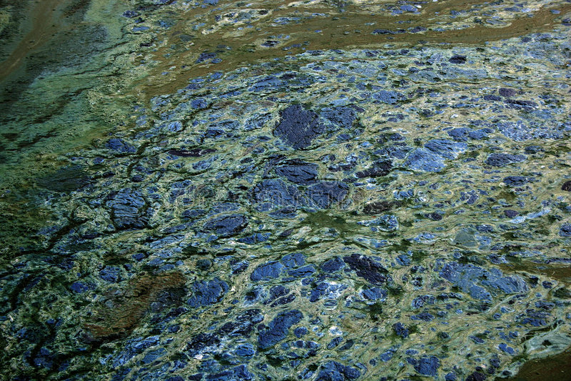 Download Verdorbene Wasserbeschaffenheit Stockbild - Bild von wasser, fett: 36323