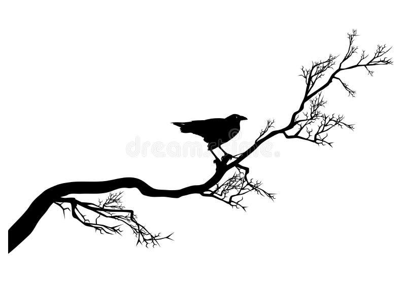 Verdrehter Baumast und schwarzer Rabenvogel vector Schattenbild stock abbildung