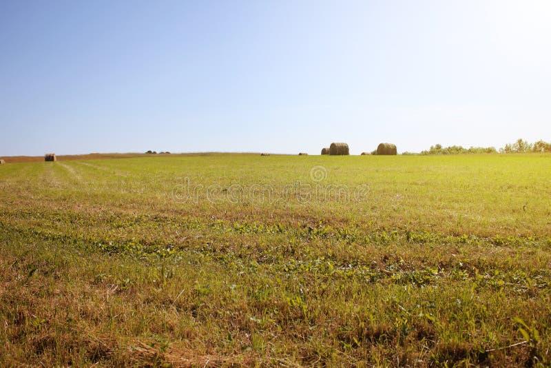 Verdrehter gelber Heuschober auf Landwirtschaftsweidelandschaft, Hintergrund lizenzfreie stockbilder