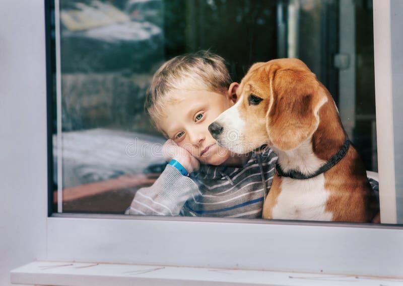 Verdriet weinig jongen met het beste vriend kijken door venster royalty-vrije stock foto