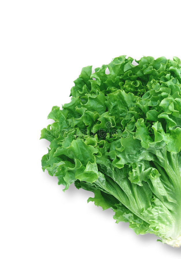 Download Verdura immagine stock. Immagine di vitamine, fresco, salute - 219951