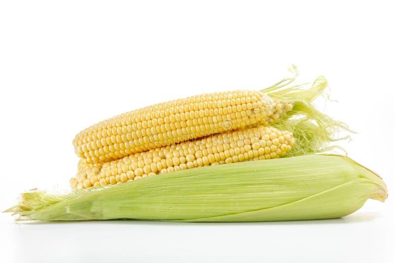 Verdura aislada en blanco, comida, amarillo del maíz imágenes de archivo libres de regalías