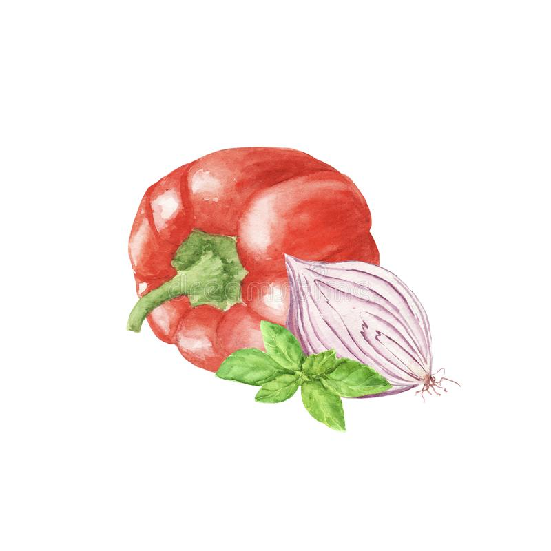 Verdura de la paprika de la acuarela con la hoja verde de la albahaca y la cebolla púrpura dulce aisladas en el fondo blanco libre illustration