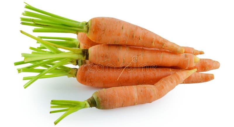 Verdura de la zanahoria con las hojas aisladas en el fondo blanco fotos de archivo