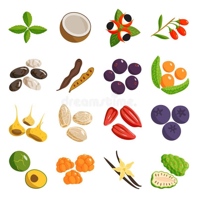 Verdura dell'alimento vegetariano e piatti sani del ristorante di frutti Vettore del fumetto illustrazione vettoriale