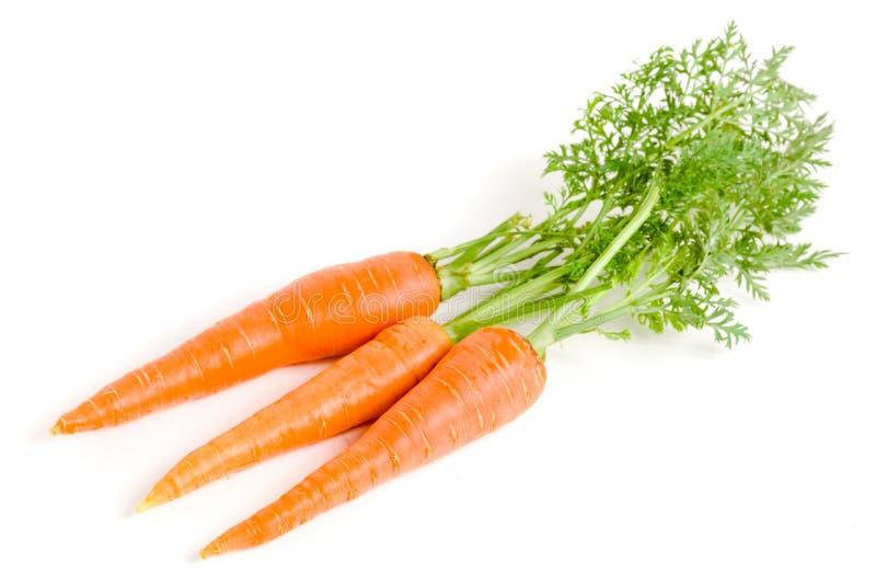 Verdura della carota con le foglie isolate su fondo bianco fotografia stock