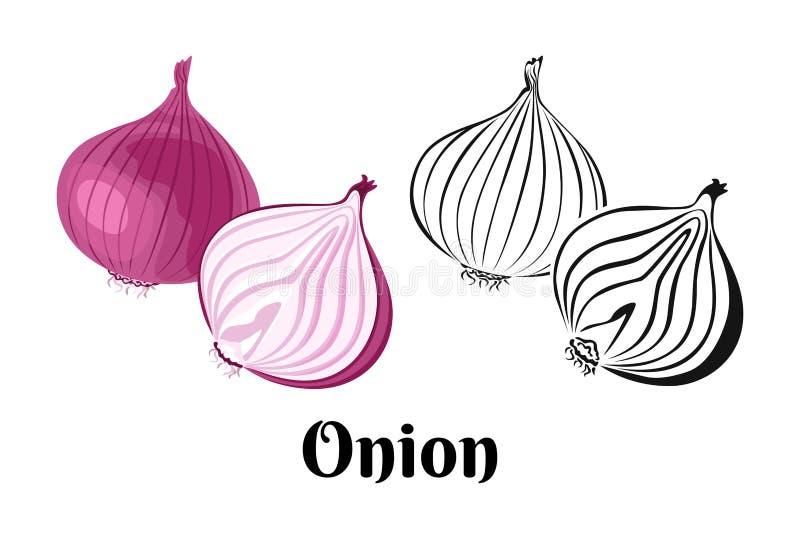 Verdura della cipolla di vettore Intere cipolla rossa e fetta royalty illustrazione gratis