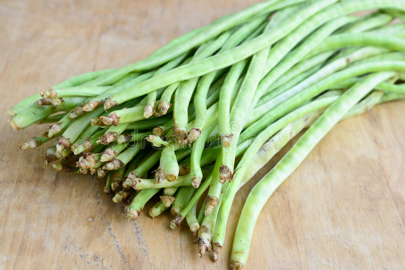 Verdura-fagioli indiani fotografia stock