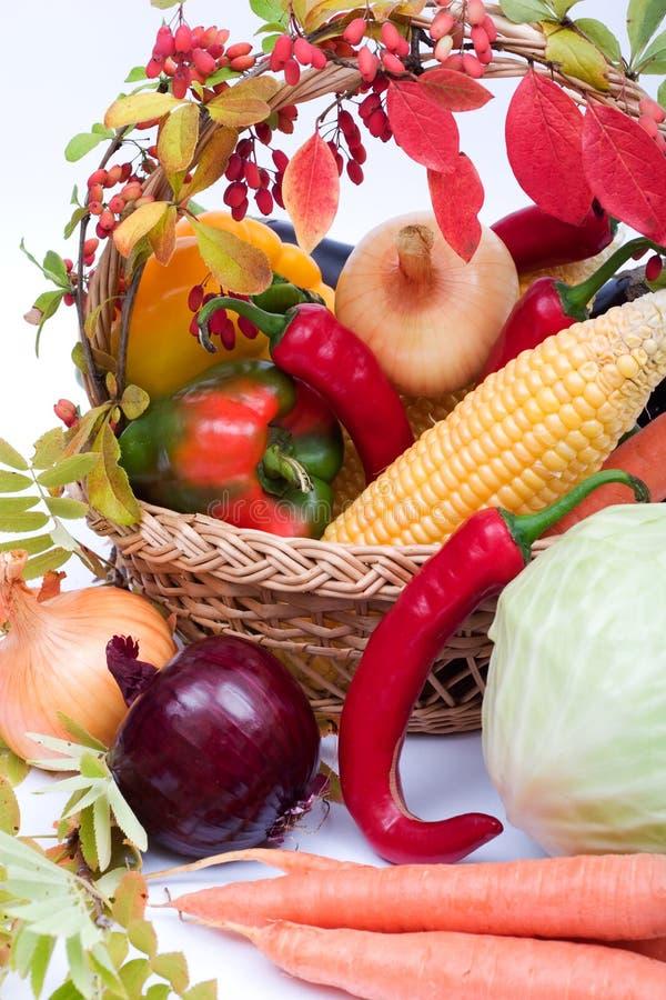 Download Verdura fresca immagine stock. Immagine di raccolta, plentifulness - 3140147