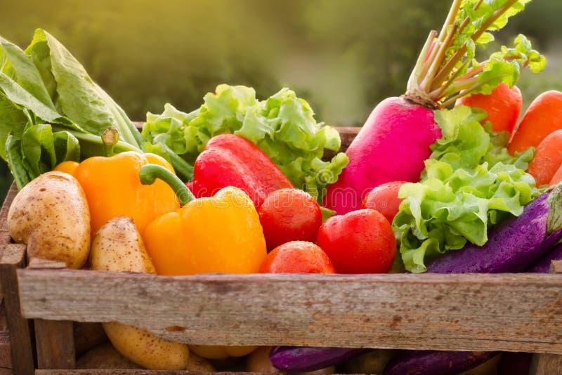 Verdura fresca differente in canestro di legno immagine stock libera da diritti