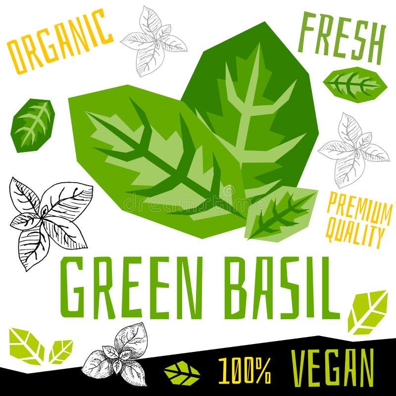 Verdura organica fresca del basilico dell'etichetta verde dell'icona, alimento matto del vegano di progettazione di grafica a col royalty illustrazione gratis