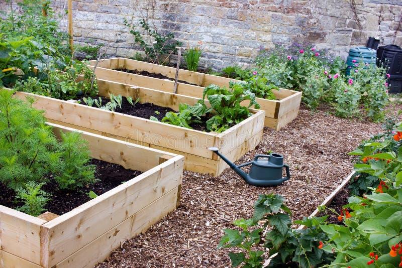 Verdura y jardín de flores rústicos del país con las camas, la espada, la regadera y Composters aumentados foto de archivo libre de regalías