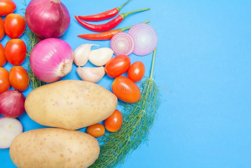 Verduras coloridas frescas orgánicas con las patatas, tomates, coriandro, chile, cebolla en fondo de papel azul fotografía de archivo libre de regalías