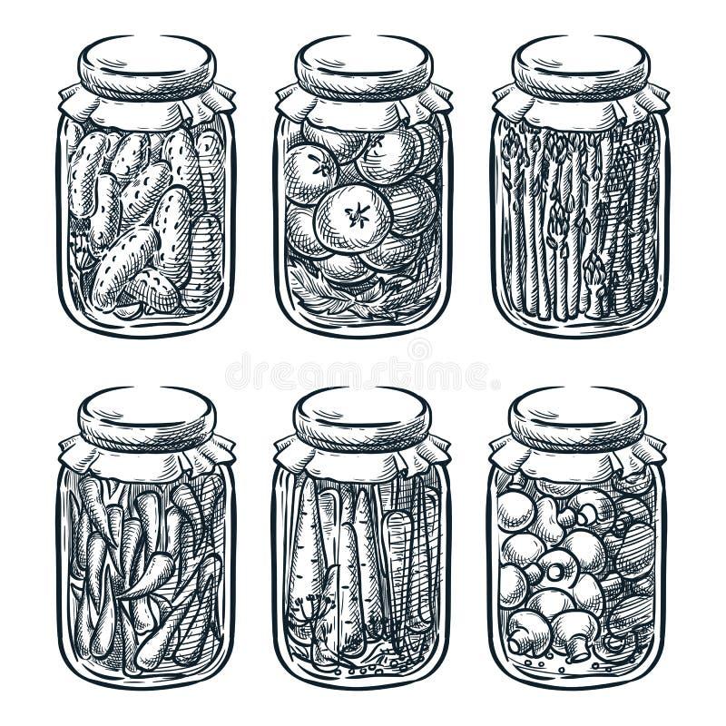 Verduras conservadas en vinagre, setas en el tarro de cristal, ejemplo del bosquejo del vector Mano hecha hogar de los cotos dibu ilustración del vector