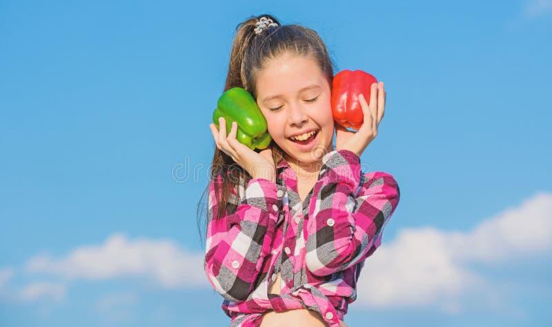 Verduras de cosecha propia de la cosecha de la ca?da Elija cu?l Concepto alternativo de la decisi?n Cielo de las pimientas rojas  imagen de archivo