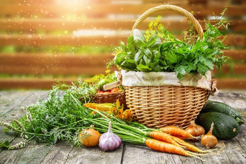 Verduras de la cosecha con las hierbas y las especias imagen de archivo