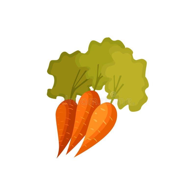 Verduras de la zanahoria del estilo de la historieta con las hojas verdes stock de ilustración