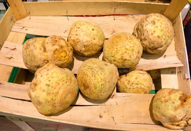 Verduras de raíces del apio nabo en supermercado como fondo de la comida. Venta al por menor. foto de archivo libre de regalías