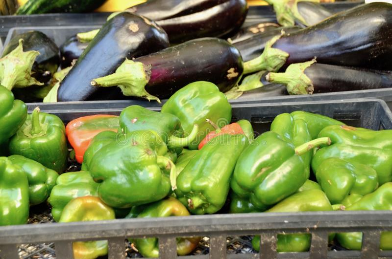 Verduras del verano foto de archivo