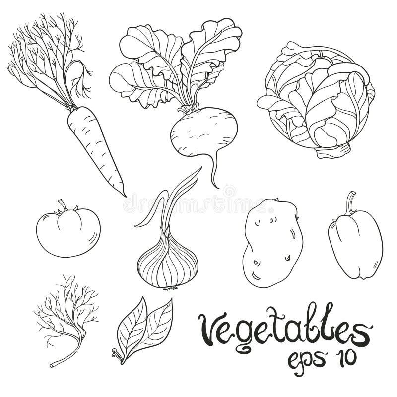 Verduras dibujadas mano fijadas Colección de bosquejo de la comida Ilustración del vector ilustración del vector