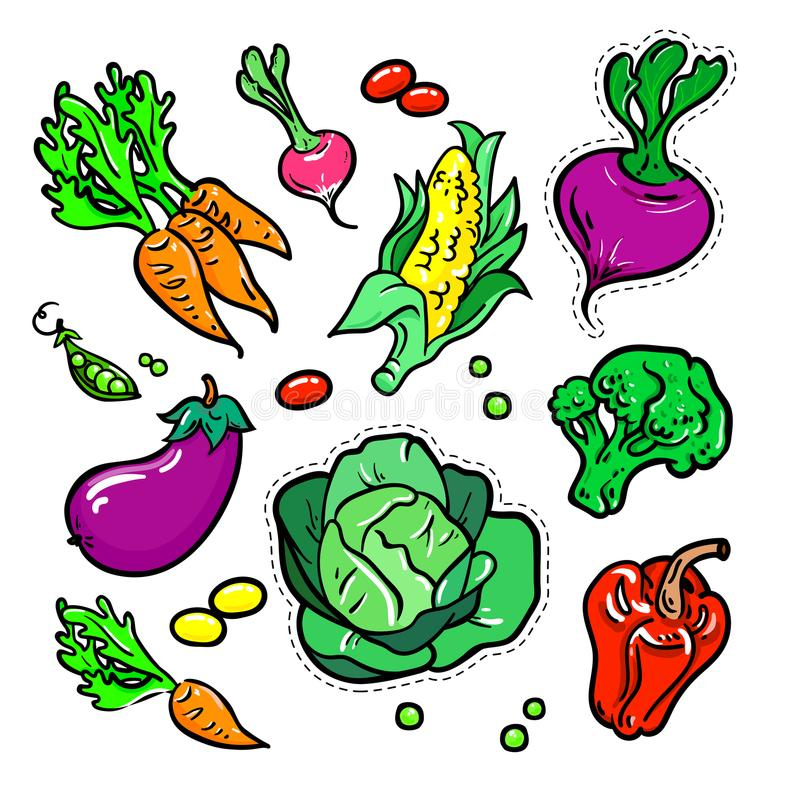 Verduras - el vector aisló las etiquetas engomadas retras fijadas ilustración del vector