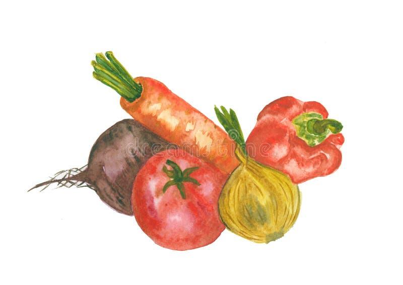 Verduras frescas aisladas stock de ilustración