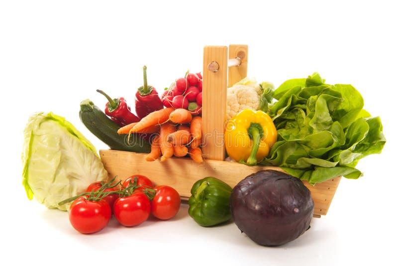 Verduras frescas de la cesta de la cosecha imagen de archivo
