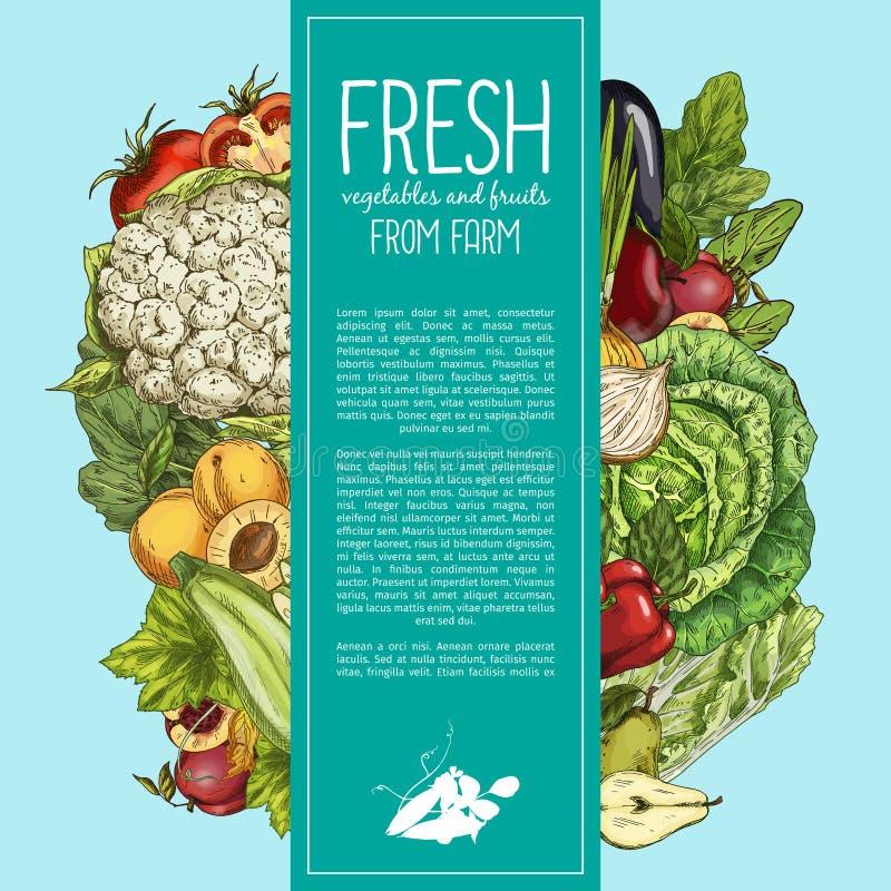 Verduras naturales y bandera orgánica de las frutas libre illustration