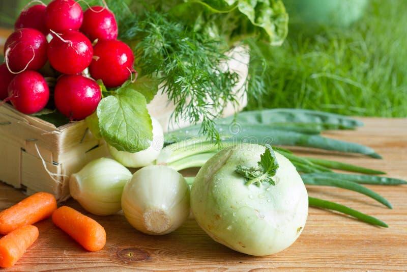 Verduras orgánicas frescas crudas de la primavera que cosechan en el jardín fotos de archivo libres de regalías