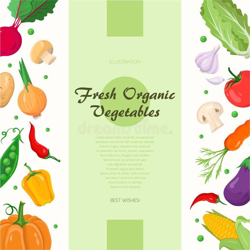 Verduras orgánicas frescas - ejemplo colorido moderno del vector ilustración del vector