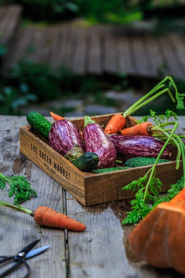 Verduras orgánicas frescas en la cesta de madera en piso de madera con el espacio de la copia verduras del concepto frescas de la imagen de archivo libre de regalías