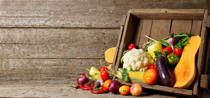 Verduras orgánicas frescas en los cajones de madera en piso de madera con el espacio de la copia verduras del concepto frescas de foto de archivo libre de regalías