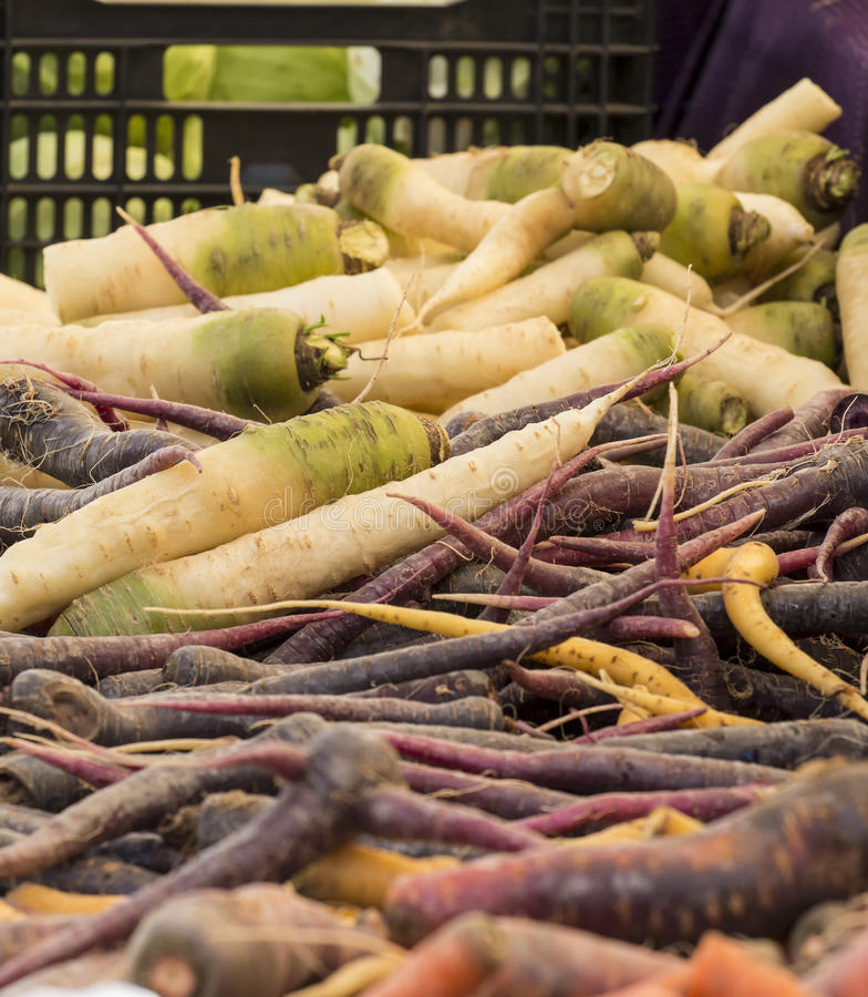 Verduras orgánicas frescas - pila de verduras de raíz en un granjero fotografía de archivo