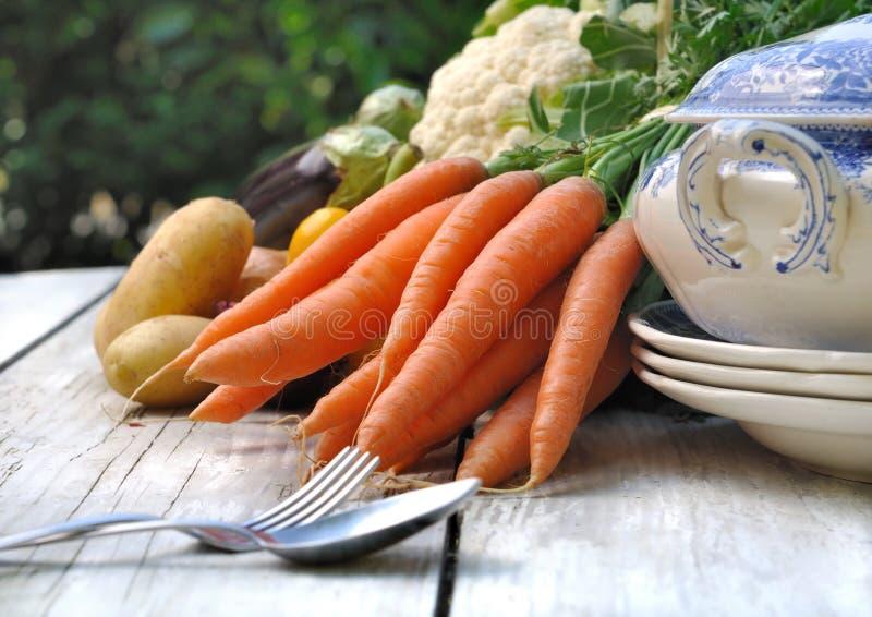 Verduras para el potage imagen de archivo libre de regalías