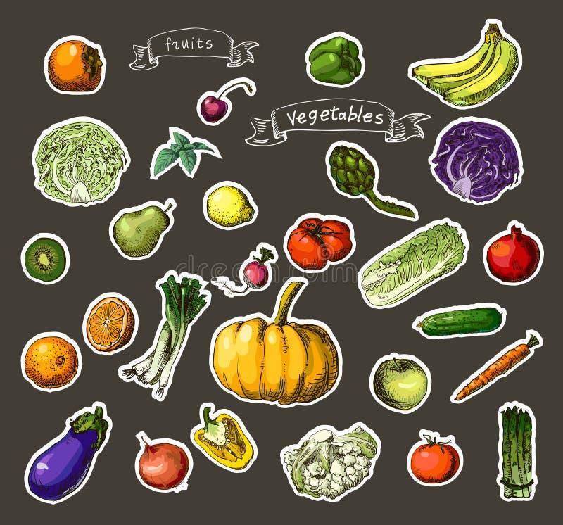 Verduras pintadas a mano, frutas libre illustration