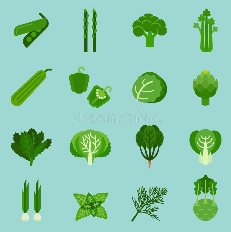 Verduras verdes colección, comida gráfica de la información, ejemplo del vector ilustración del vector