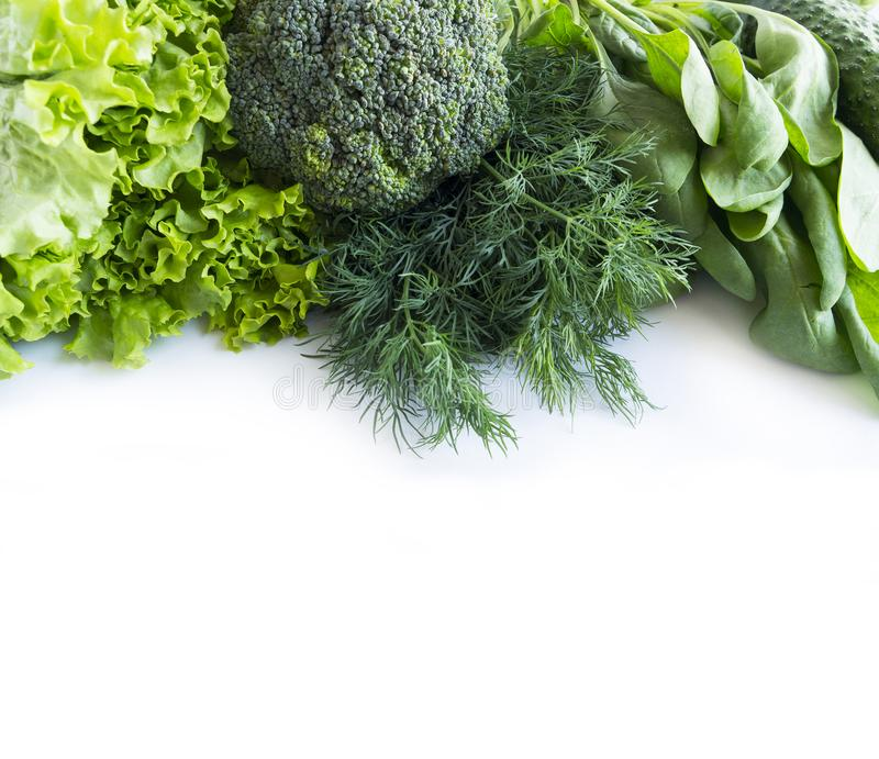 Verduras verdes en un fondo blanco Espinaca, bróculi, eneldo y lechuga Verduras verdes en la frontera de la imagen con el espacio fotos de archivo